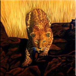 """""""Leopard"""" (40 x 40)"""