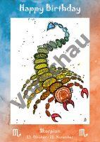 - Vorderseite Skorpion -